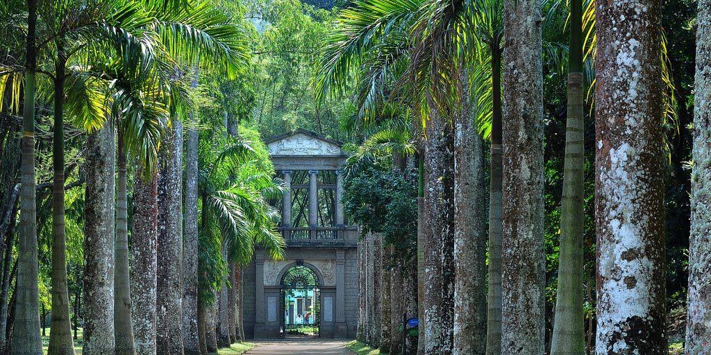 3. Jardim botânico