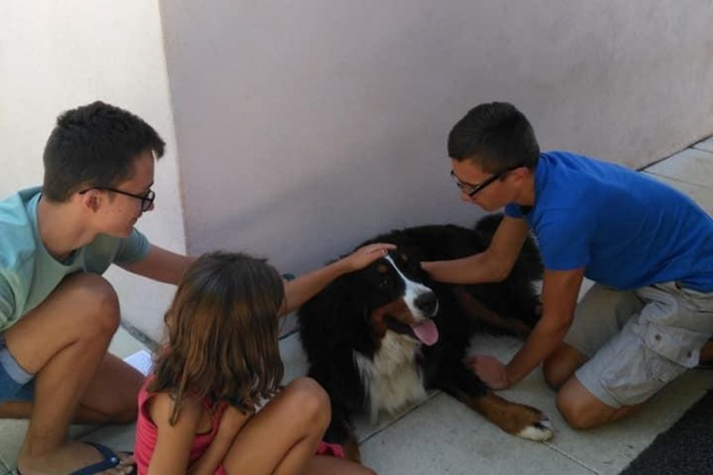 Alt HomeExchange_familia_perro, title HomeExchange_familia_perro